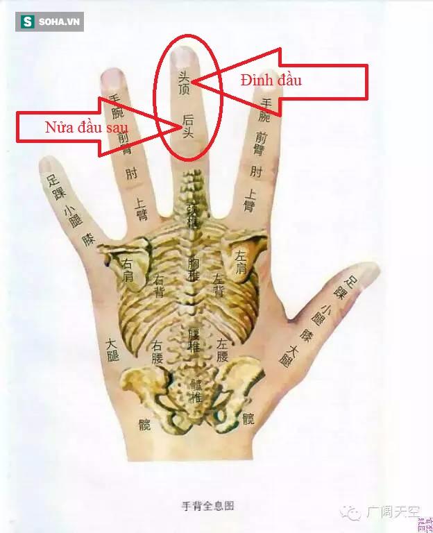 Bôi dầu gió lên đốt ngón tay giữa: Cách hay trong Đông y để phát hiện bệnh về não - Ảnh 4.