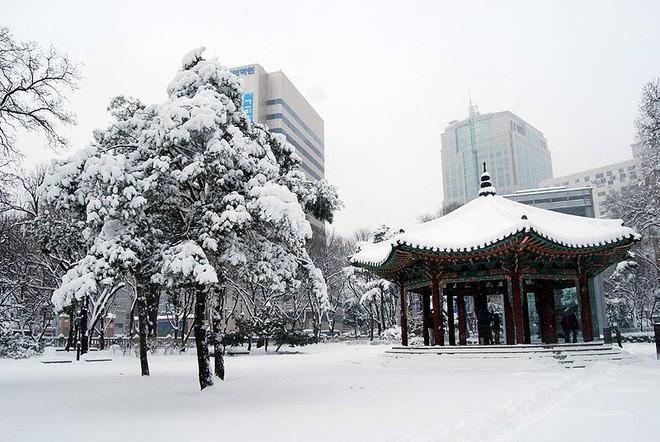 Ngất ngây với những hình ảnh tuyết rơi đẹp lung linh trên khắp thế giới - Ảnh 4.