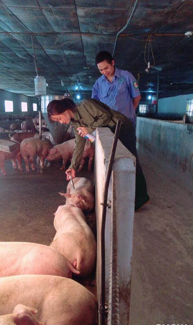 Cô nàng chăn lợn xinh đẹp gây tò mò nhất Facebook hôm nay! - Ảnh 5.