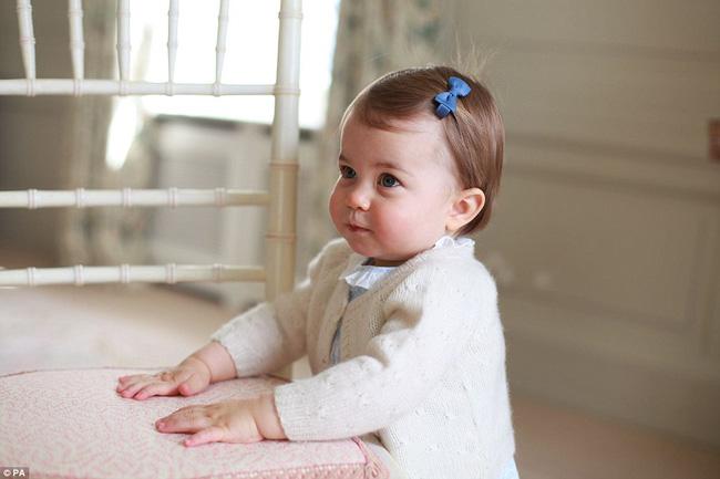 Công nương Kate được Hiệp Hội Nhiếp ảnh Hoàng Gia Anh khen ngợi vì những bức ảnh tuyệt đẹp - Ảnh 8.