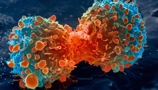 Đường và ung thư thực sự có liên quan với nhau? Đây là câu trả lời của các nhà khoa học - Ảnh 2.