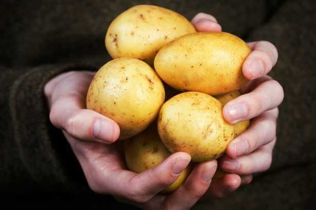Hãy bỏ ngay thói quen tích trữ khoai tây trong tủ lạnh: Đây là lý do - Ảnh 2.