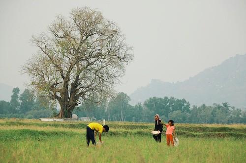 Mùa nước nổi nhất định phải đi An Giang để thổn thức về một miền Tây rất lạ - Ảnh 2.