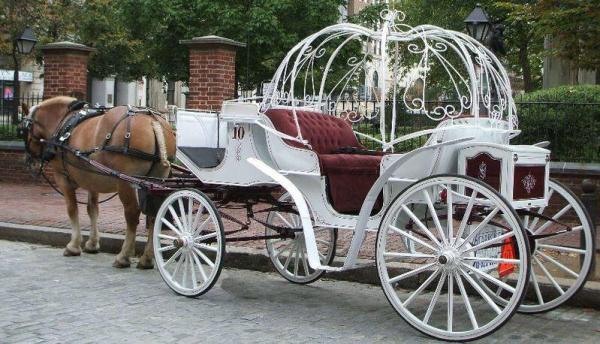 Cận cảnh dàn khách mời VIP của đám cưới Đường Yên - La Tấn: Di chuyển bằng xe ngựa trong không gian ngập màu tím - Ảnh 6.