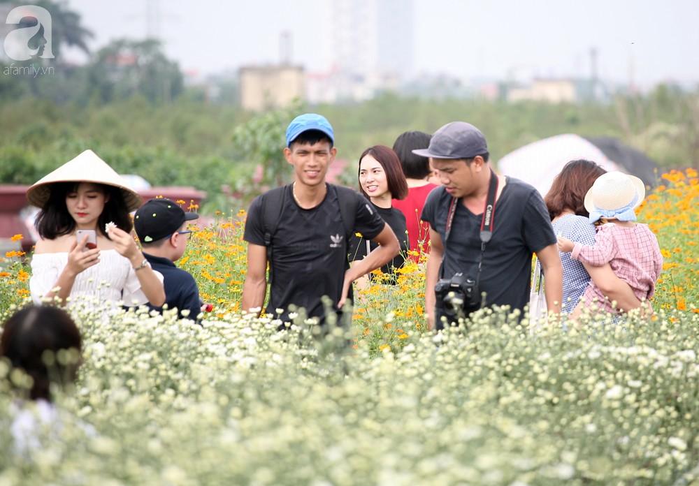 Phụ nữ, trẻ em chen nhau tạo dáng chụp ảnh kín đặc vườn cúc họa mi Nhật Tân - Ảnh 3.