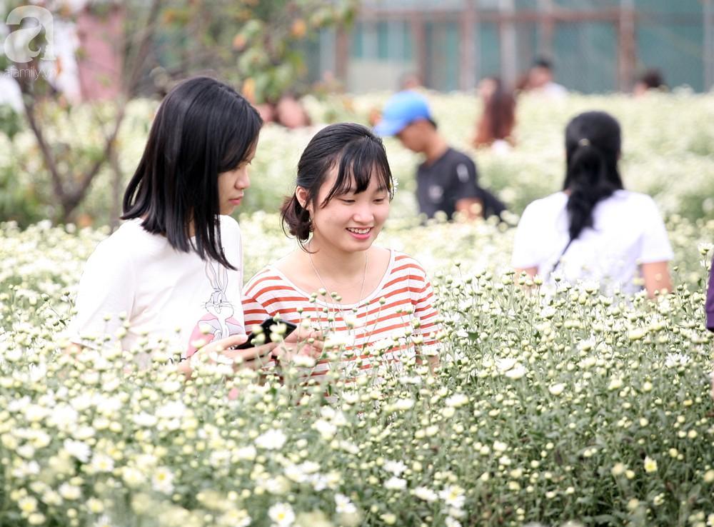 Phụ nữ, trẻ em chen nhau tạo dáng chụp ảnh kín đặc vườn cúc họa mi Nhật Tân - Ảnh 5.