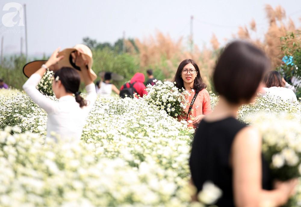 Phụ nữ, trẻ em chen nhau tạo dáng chụp ảnh kín đặc vườn cúc họa mi Nhật Tân - Ảnh 6.
