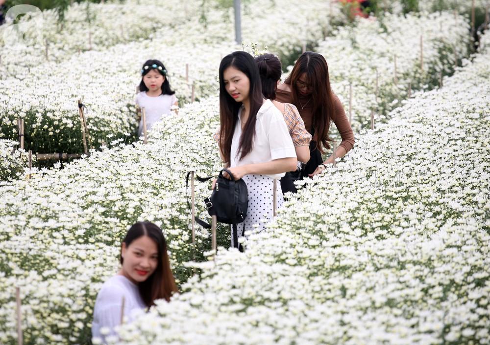 Phụ nữ, trẻ em chen nhau tạo dáng chụp ảnh kín đặc vườn cúc họa mi Nhật Tân - Ảnh 7.