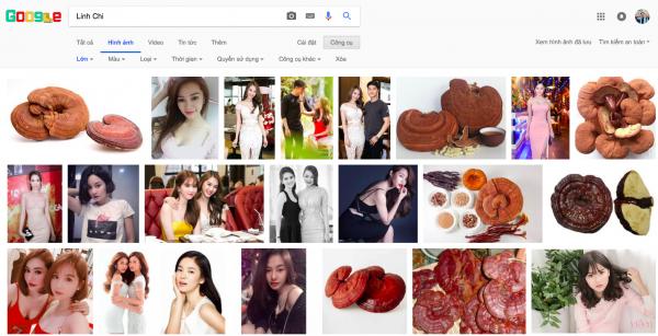 Đến cả Google cũng phải bó tay trước nghệ danh của loạt sao Việt này! - Ảnh 10.