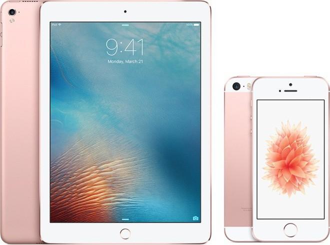 Du học sinh Trung Quốc bị bắt vì tuồn iPhone, iPad giả vào Mỹ, thu lợi bất chính hơn 1,1 triệu USD - Ảnh 1.