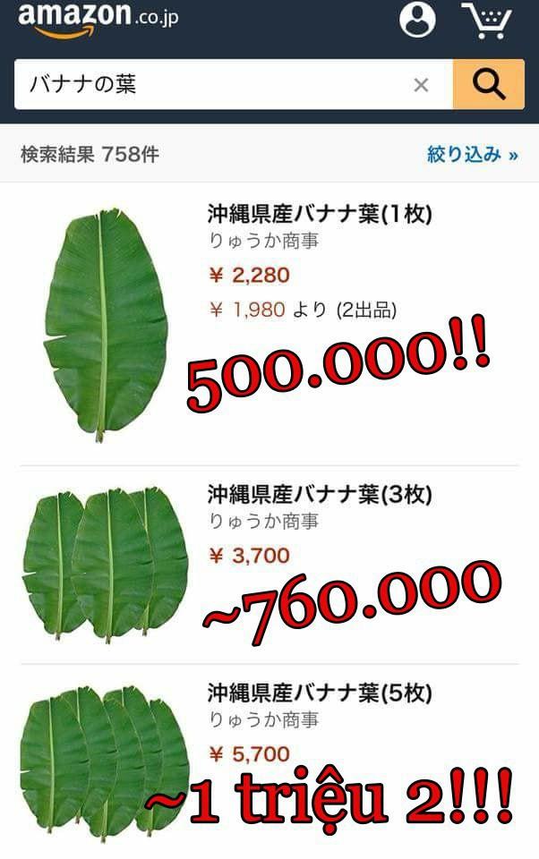 Chổi bông giá 2 triệu, hoa mai giả tận 15 triệu còn lá chuối, bèo tây thành đặc sản, đích thị là hàng Việt bán ở Nhật Bản rồi! - Ảnh 6.