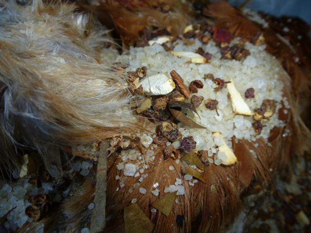 Chuột bao tử ăn sống, gà khô để nguyên lông là 2 trong 5 món ăn kỳ quái nhất Trung Quốc, người phàm ăn nhất cũng ái ngại - Ảnh 13.