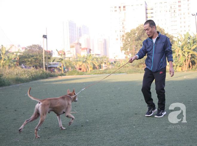 Năm Tuất và chuyện con chó gắn bó với đời sống của người Việt chúng ta như thế nào? - Ảnh 1.