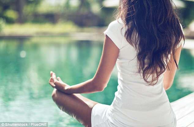 Ngồi thiền 1 giờ mỗi ngày mang đến nhiều cơ hội phục hồi tinh thần ở tuổi già - Ảnh 1.