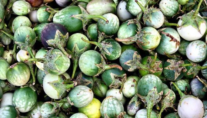 4 loại rau củ đắng ơi là đắng nhưng chế biến thành món ăn thì ngon miễn chê - Ảnh 10.