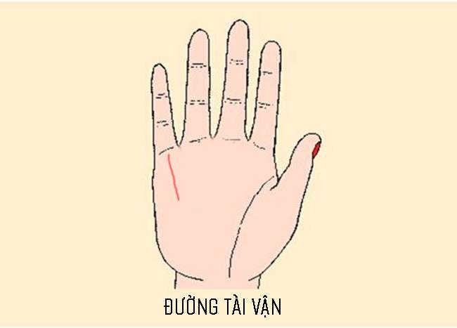 Xòe bàn tay xem bạn có sở hữu 3 đường chỉ tay đem lại cuộc sống thoải mái, không bao giờ phải lo lắng về tiền bạc hay không? - Ảnh 2.