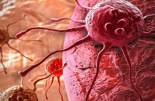Phát hiện 2 protein ở da người tự hủy tế bào ung thư - Ảnh 1.