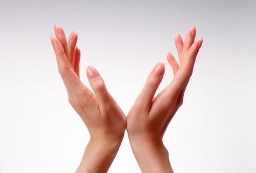 """Đoán """"trúng phóc"""" tính cách của bạn qua hình dáng bàn tay - Ảnh 2."""