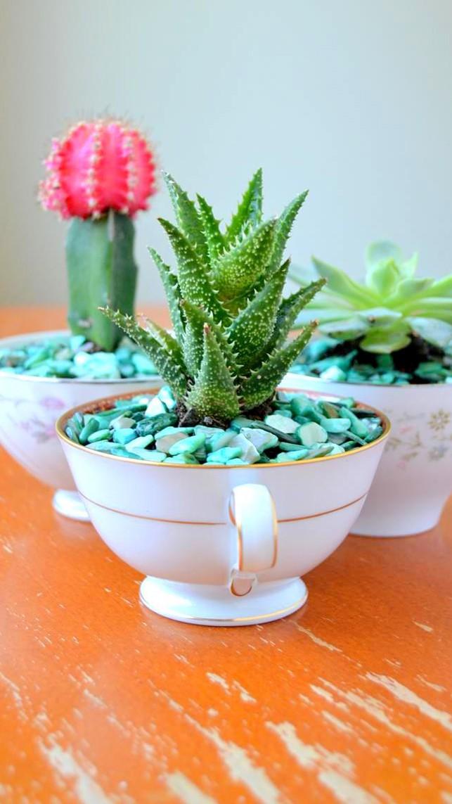 Sáng tạo chậu trồng cây theo những cách này, bạn sẽ mang cả sắc màu trang trí lạ cho căn nhà - Ảnh 4.