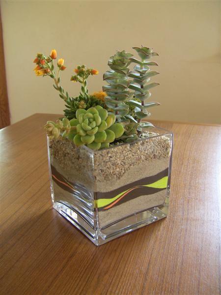 Trồng cây trong nhà bằng cách sử dụng những dạng bình cát màu vô cùng độc đáo - Ảnh 8.