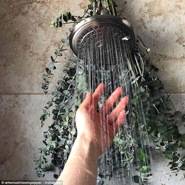 Cả nhà thắc mắc khi thấy mẹ treo cành cây này trên vòi sen, đến khi tắm ai cũng thích và hiểu lý do - Ảnh 2.