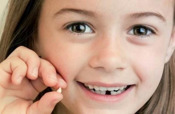 Đừng bao giờ vứt chiếc răng sữa của con đi vì nó sẽ cứu sống con bạn đấy! - Ảnh 2.