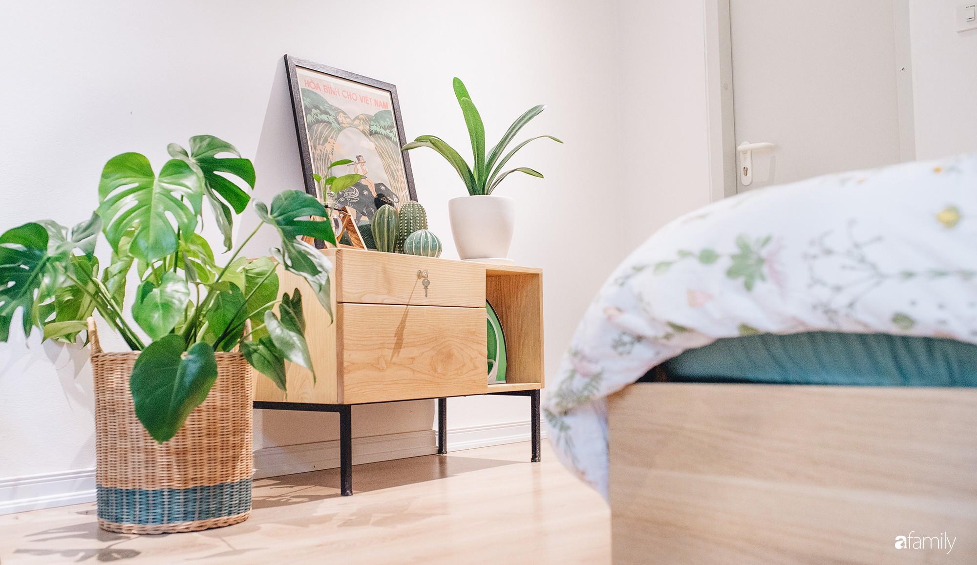 Cây xanh - cách làm mới không gian sống nhanh, rẻ, dễ ứng dụng để đón hè vào nhà - Ảnh 8.