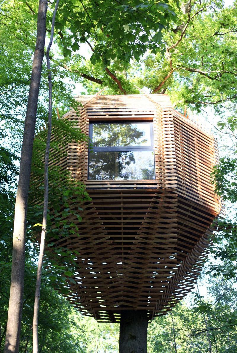 Ngôi nhà trên cây nằm giữa rừng xanh có đầy đủ tiện nghi như khách sạn - Ảnh 1.