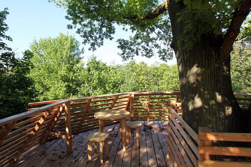 Ngôi nhà trên cây nằm giữa rừng xanh có đầy đủ tiện nghi như khách sạn - Ảnh 10.