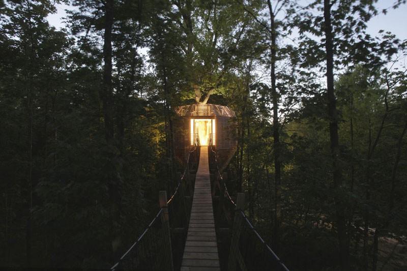 Ngôi nhà trên cây nằm giữa rừng xanh có đầy đủ tiện nghi như khách sạn - Ảnh 11.