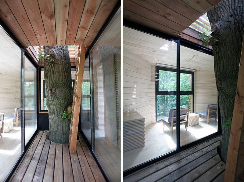 Ngôi nhà trên cây nằm giữa rừng xanh có đầy đủ tiện nghi như khách sạn - Ảnh 4.