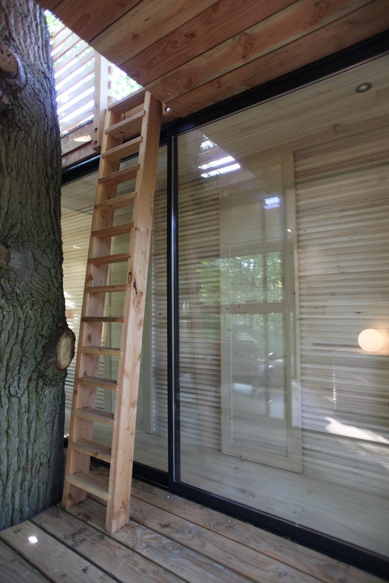 Ngôi nhà trên cây nằm giữa rừng xanh có đầy đủ tiện nghi như khách sạn - Ảnh 8.