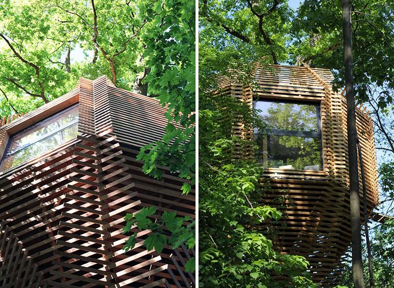 Ngôi nhà trên cây nằm giữa rừng xanh có đầy đủ tiện nghi như khách sạn - Ảnh 9.