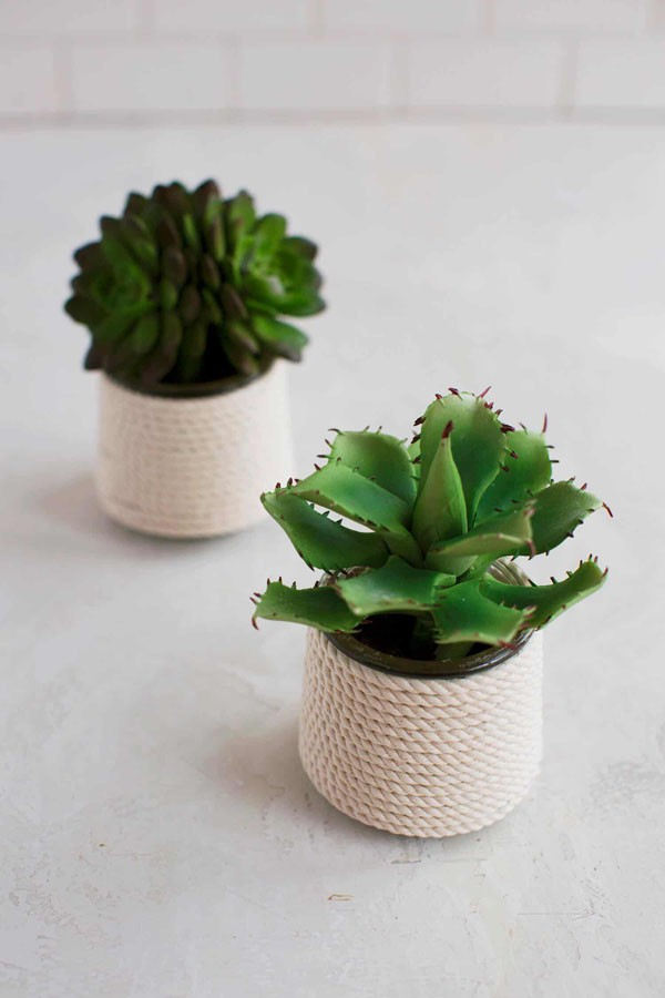 4 cách tái chế lọ thủy tinh làm chậu trồng cây đơn giản mà đẹp - Ảnh 2.