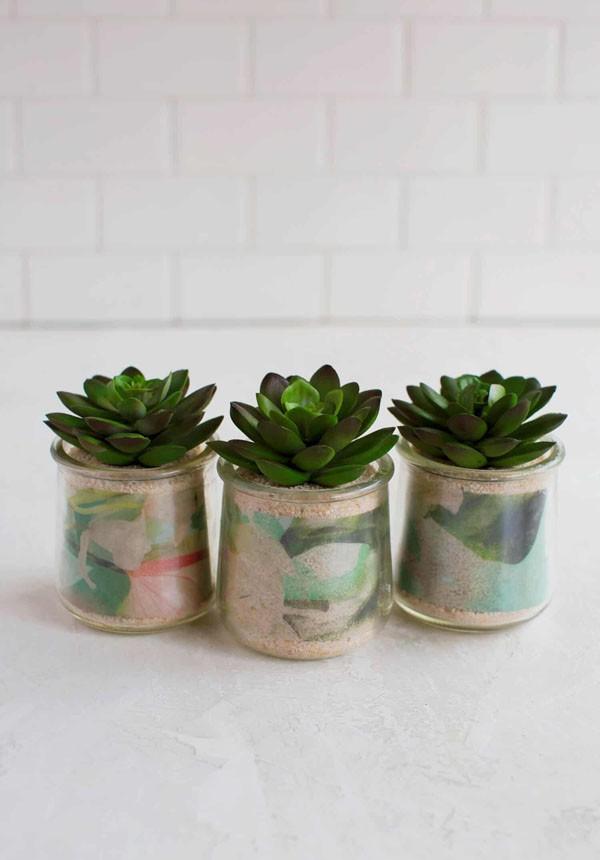 4 cách tái chế lọ thủy tinh làm chậu trồng cây đơn giản mà đẹp - Ảnh 5.