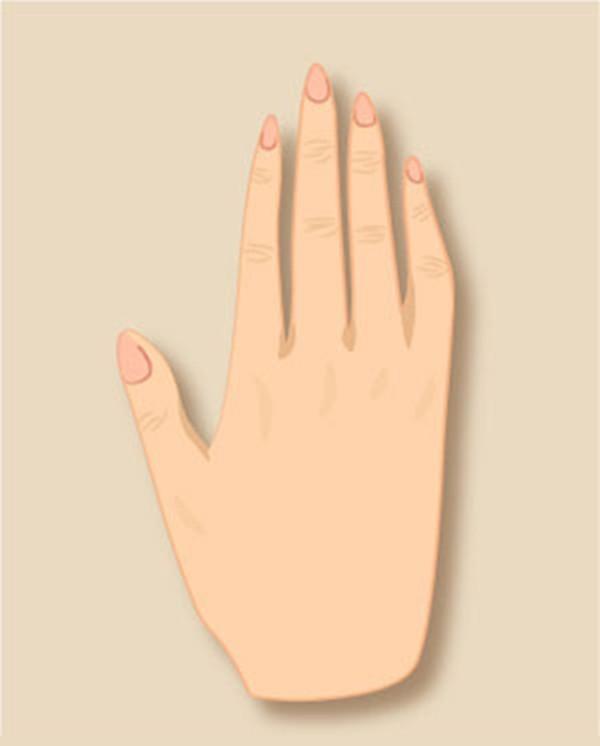 Bàn tay cũng có bản mệnh riêng, tiết lộ những tính cách tiềm ẩn đến chính bạn còn chẳng nhận ra - Ảnh 4.
