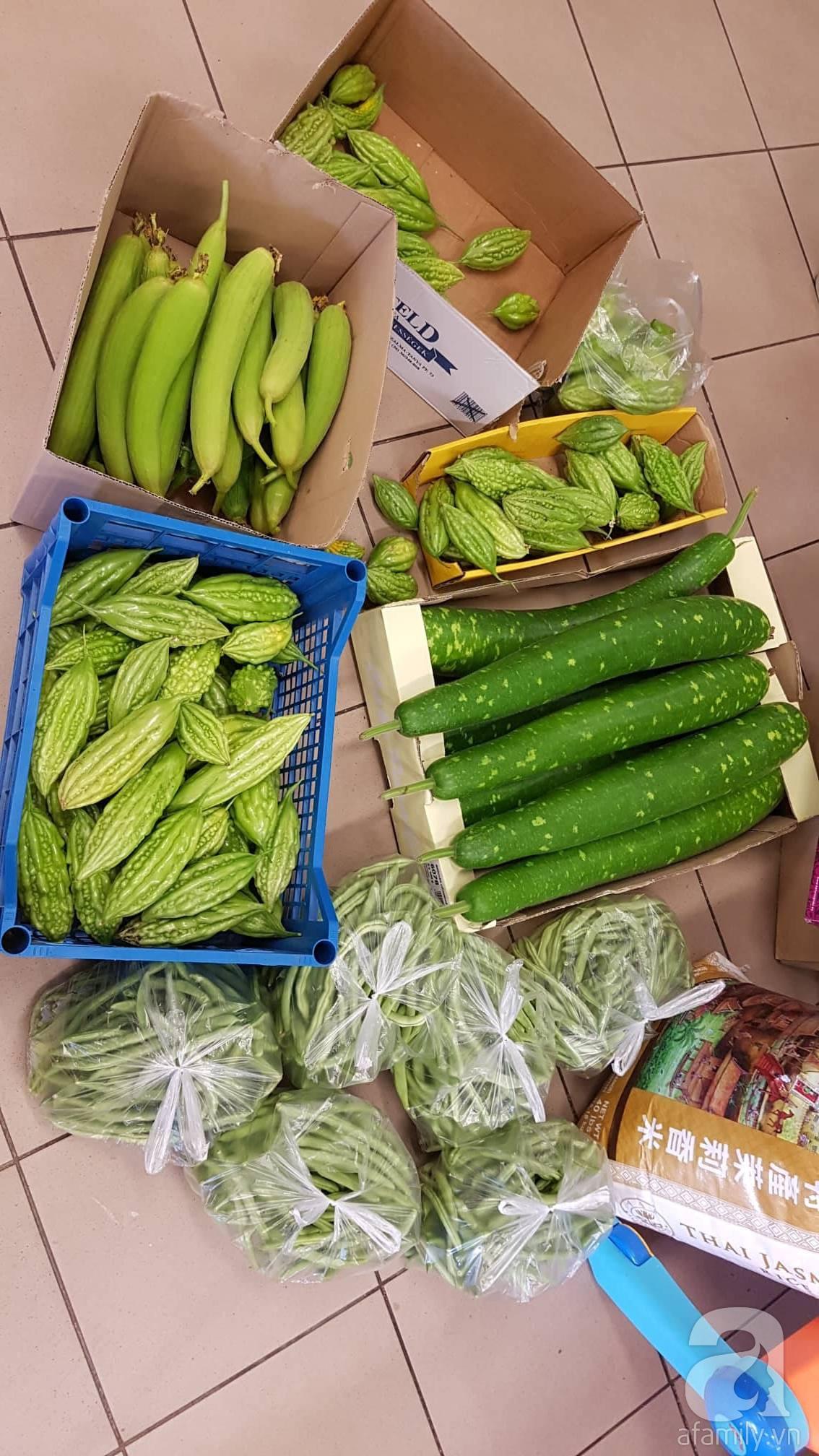 Choáng ngợp trước vườn rau sạch rộng 600m² với đủ rau trái Việt của bà mẹ trẻ ở nước ngoài - Ảnh 12.