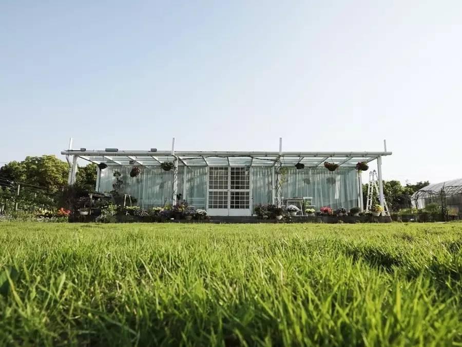 Cô gái 19 tuổi và ý tưởng cải tạo nhà cấp 4 thành ngôi nhà vườn đẹp bình yên trên mảnh đất rộng 6000m²  - Ảnh 13.