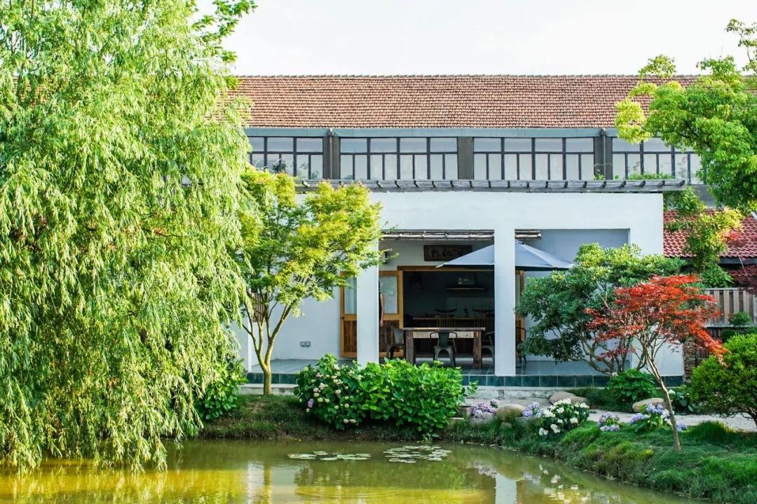 Ngôi nhà vườn rộng 4000m² đẹp bình yên được cải tạo từ mảnh đất toàn rác nhờ sự đồng lòng của hai vợ chồng bỏ phố về quê - Ảnh 6.