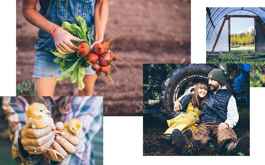 Trang trại toàn rau xanh, cây trái mát lành của cặp vợ chồng blogger ẩm thực thích sống chỉ để vui chơi khiến ai cũng ước ao, xao xuyến - Ảnh 3.