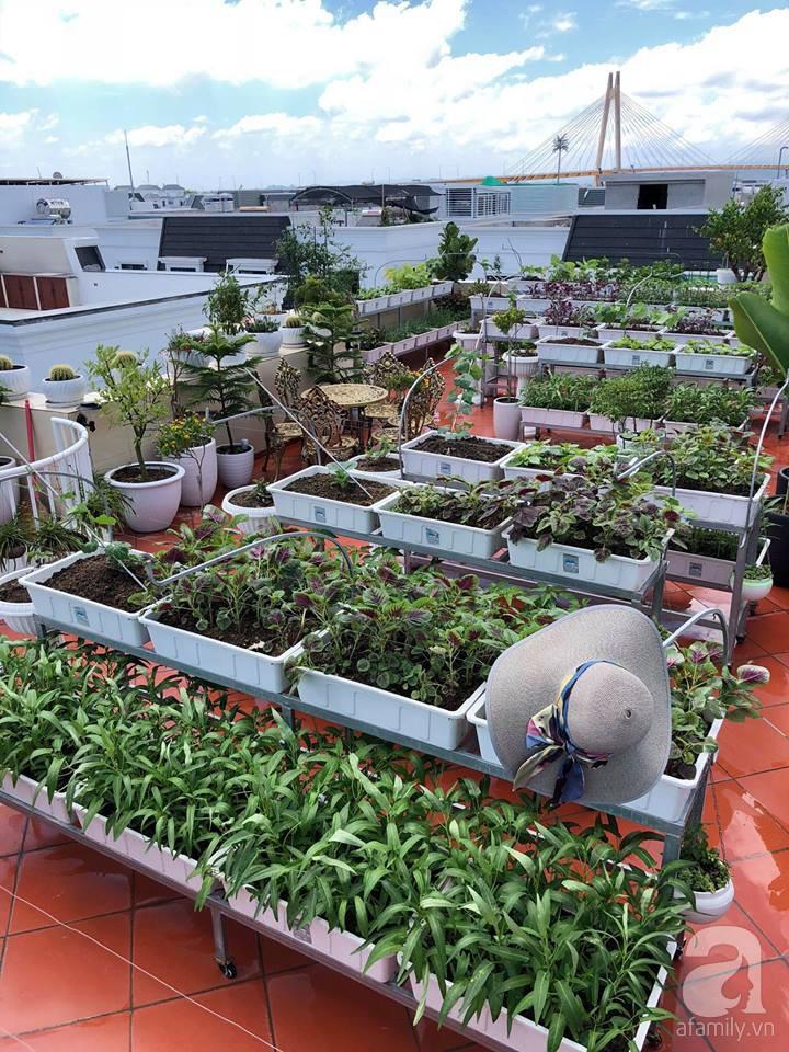 Vườn rau trên sân thượng bạt ngàn rau quả mùa hè của bà mẹ 3 con ở Hải Phòng - Ảnh 11.