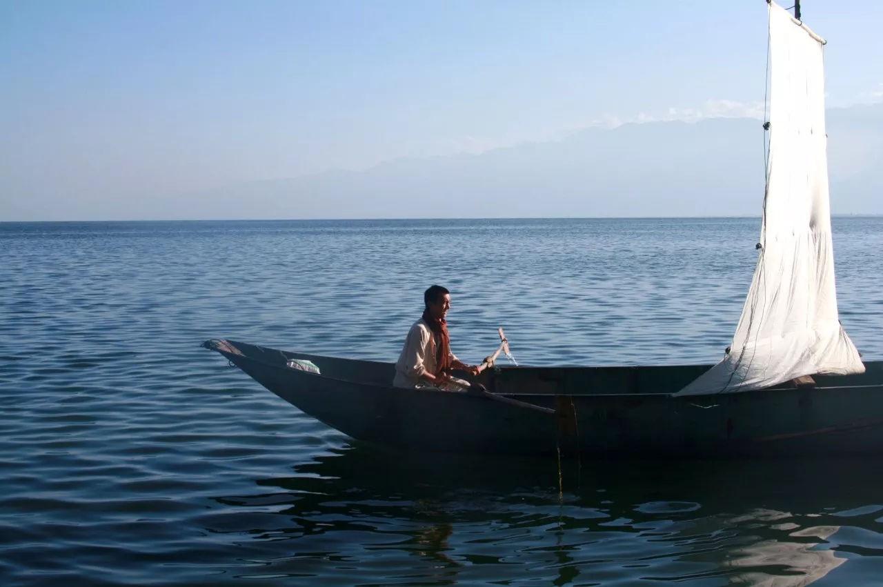 Ông bố trẻ vì gia đình, bỏ cuộc sống phiêu du về quê thuê trang trại 166 nghìn m² trồng rau, thả cá - Ảnh 9.