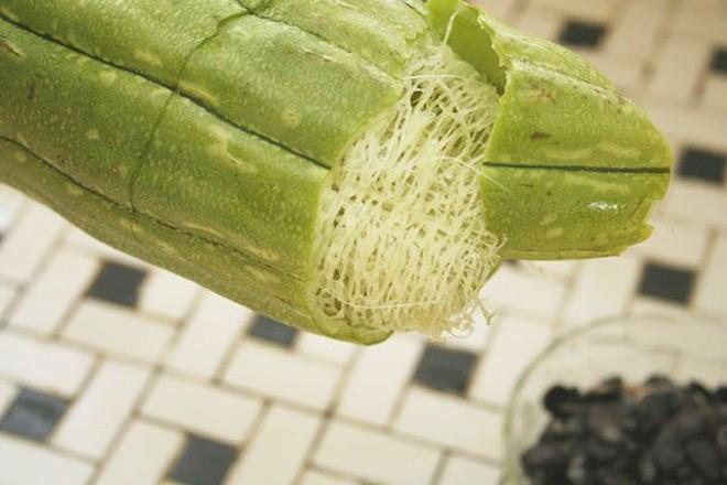 Không chỉ ngon mát, loại quả có nhiều ở Việt Nam này là vị thuốc quý thanh nhiệt, giải độc - Ảnh 1.