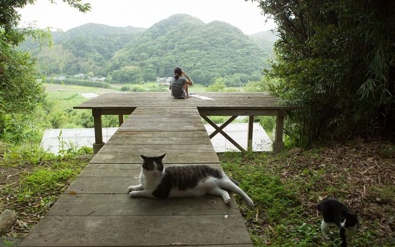 Nữ kỹ sư Nhật bỏ nhà phố, cùng gia đình về sống trong ngôi nhà nhỏ yên bình với vườn tược nơi thôn quê - Ảnh 21.