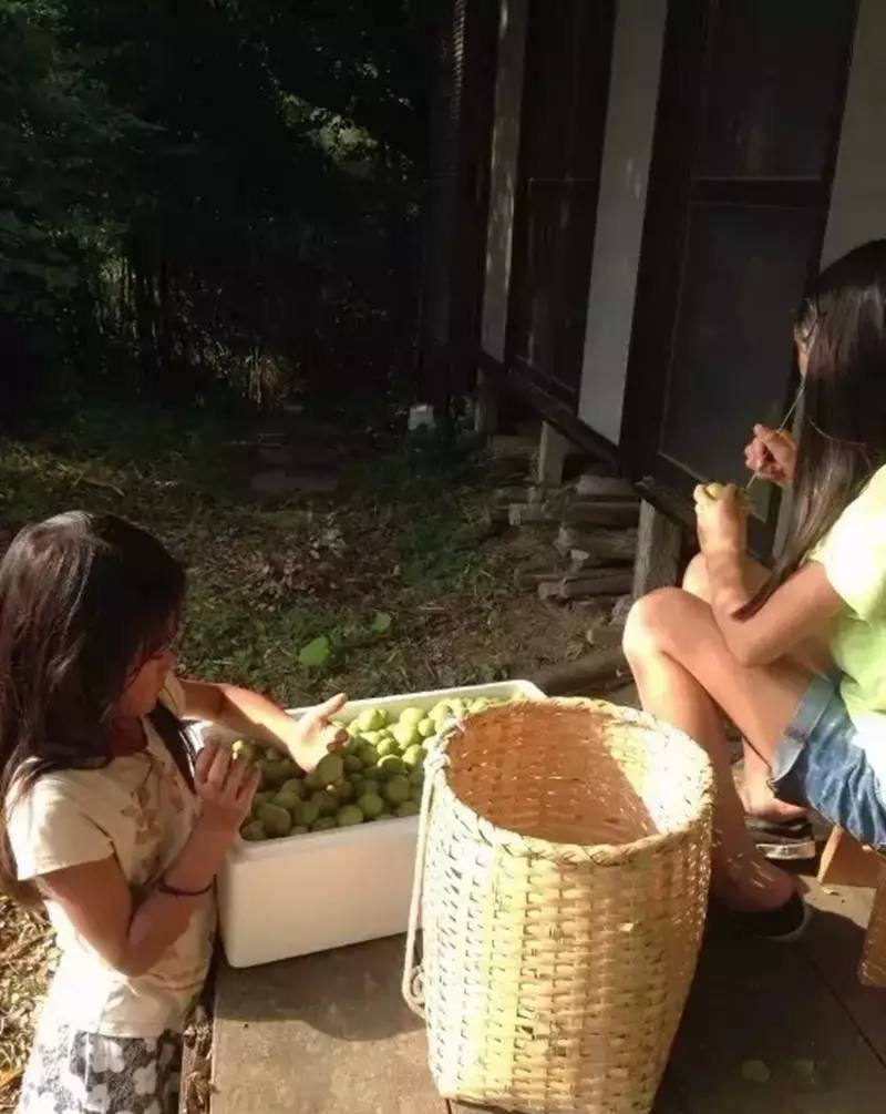 Nữ kỹ sư Nhật bỏ nhà phố, cùng gia đình về sống trong ngôi nhà nhỏ yên bình với vườn tược nơi thôn quê - Ảnh 15.