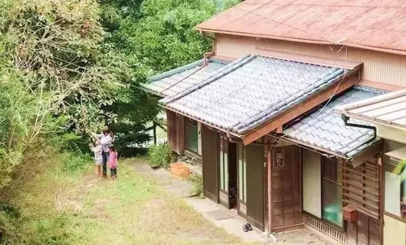 Nữ kỹ sư Nhật bỏ nhà phố, cùng gia đình về sống trong ngôi nhà nhỏ yên bình với vườn tược nơi thôn quê - Ảnh 6.