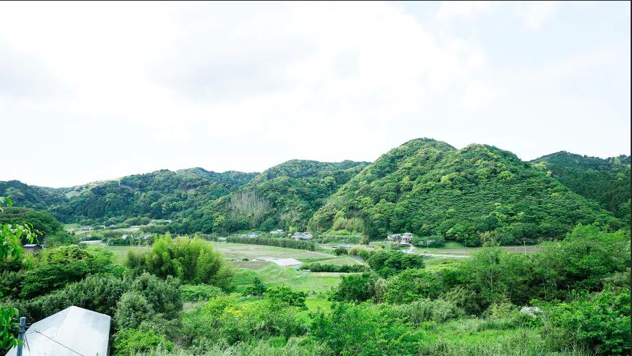 Nữ kỹ sư Nhật bỏ nhà phố, cùng gia đình về sống trong ngôi nhà nhỏ yên bình với vườn tược nơi thôn quê - Ảnh 1.