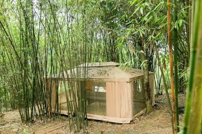Với 33 triệu đồng, hai chàng trai trẻ đã tự tay xây ngôi nhà nhỏ đẹp lãng mạn giữa rừng tre trúc - Ảnh 5.