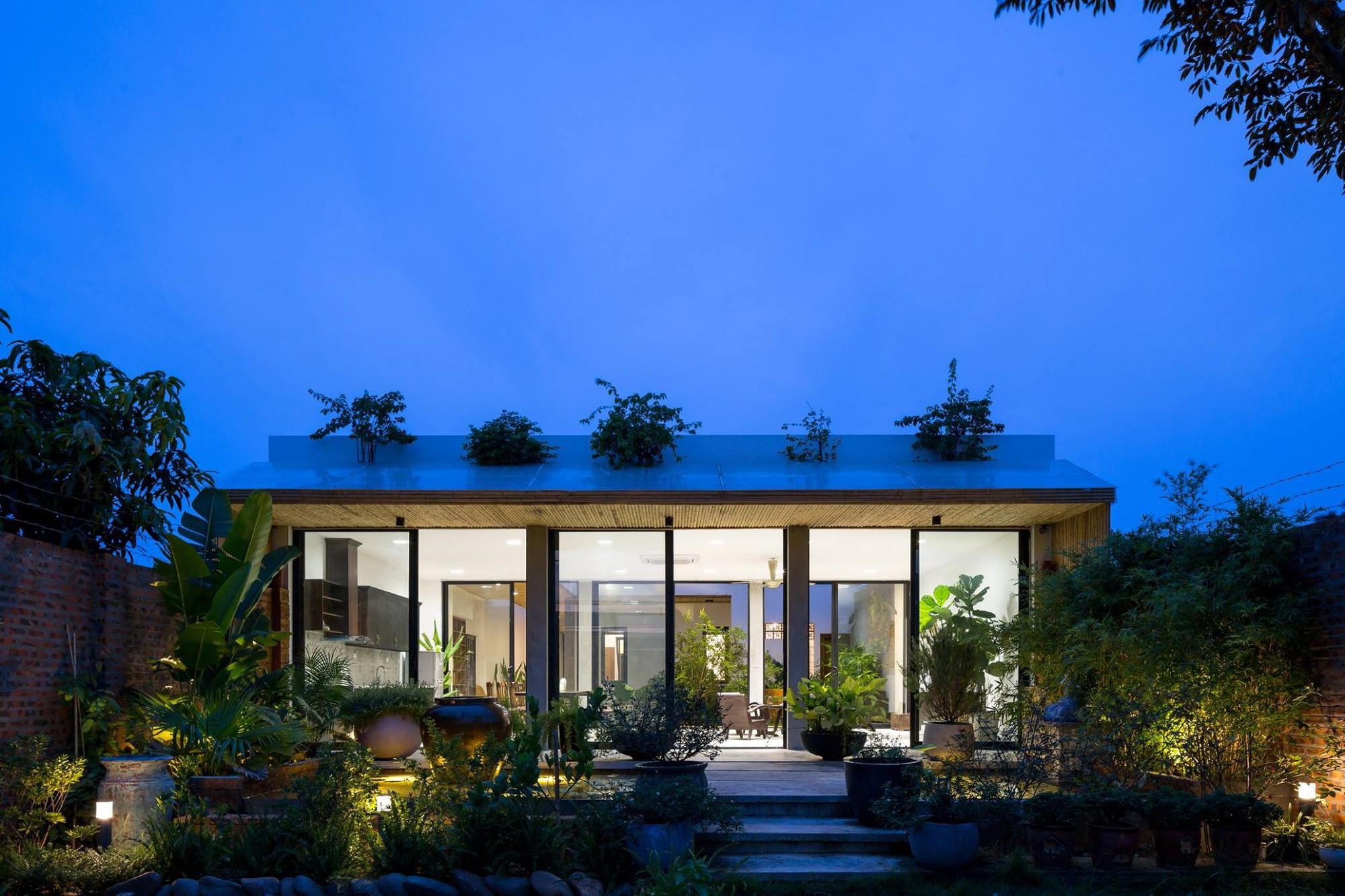 Ngôi nhà cấp 4 chan hòa ánh nắng và cây xanh mang lại vẻ yên bình đến khó tin ở Hà Nội - Ảnh 2.