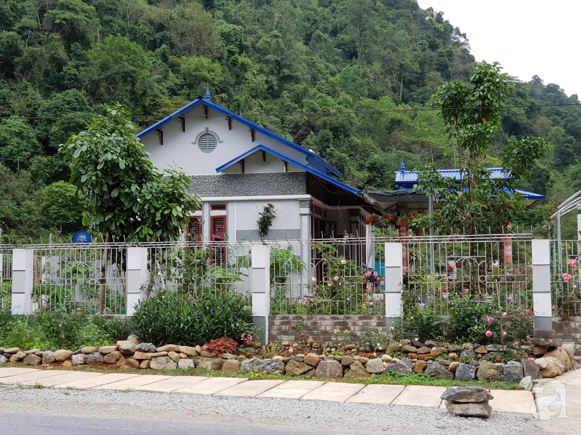 Ngôi nhà hoa hồng thơm ngát và rực rỡ với hàng trăm gốc hồng trên triền núi của cô giáo ở Cao Bằng - Ảnh 5.